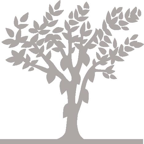 arbre_logo_dmp